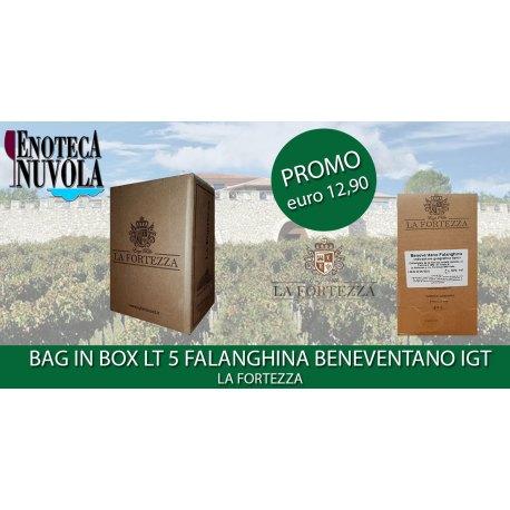 Bag in Box Falanghina Beneventano IGT La Fortezza LT 5