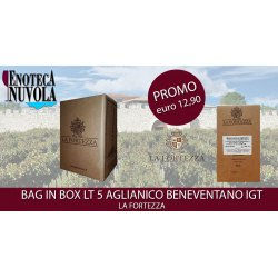 Bag in Box Aglianico Beneventano IGT La Fortezza LT 5